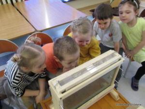 Wizyta pszczelarza w przedszkolu